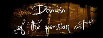 disease persian cat